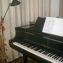 Voice&Piano Lesson